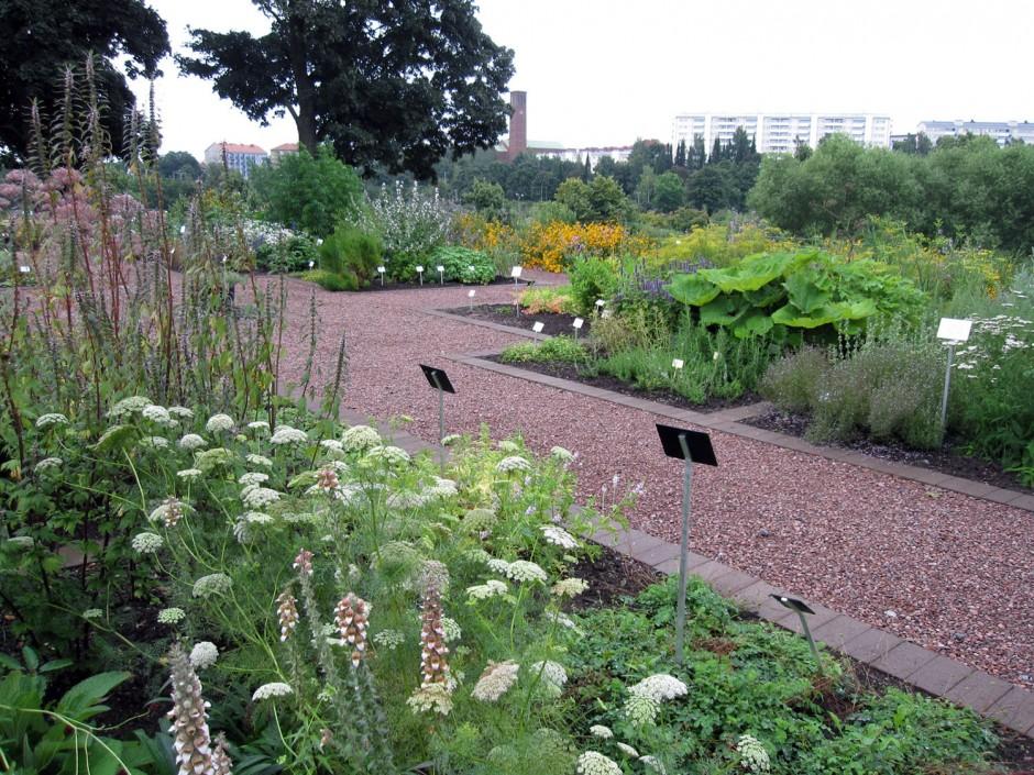 Kumpulan kasvitieteellinen puutarha