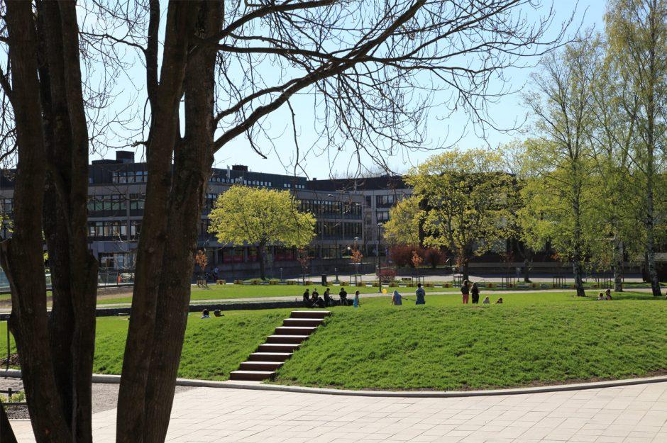 Tikkurilan kävelykeskusta ja Kirjastonpuisto